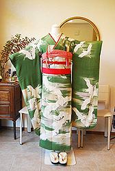 新入荷☆翡翠色の婚礼衣装