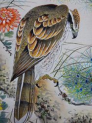 鷹に松菊の絽名古屋帯