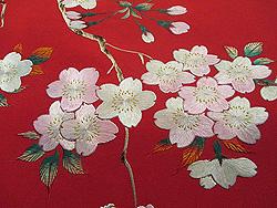 満開の桜と芍薬のお散歩着