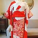 紅赤色飛翔鶴錦紗縮緬振袖(セットの襦袢)