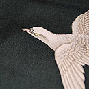 鳩の図付下 質感・風合