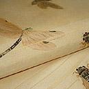 蜻蛉に蝉柄紗名古屋帯 質感・風合