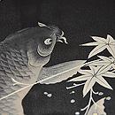 鯉の図夏羽織 羽裏