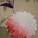 菊の図小紋 質感・風合