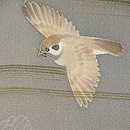 飛翔雀の図羽織 質感・風合