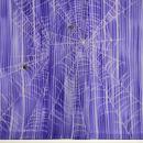 絽錦紗刷毛暈しに蜘蛛の巣付下 上前