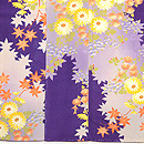 紫濃淡万寿、小菊と紅葉小紋 上前