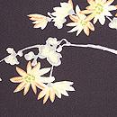 黒地に梅、菊の羽織 質感・風合