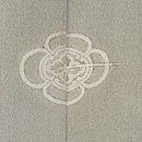 鵜飼いの図絵羽織 背紋