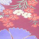 撫子に秋の七草絽小紋 質感・風合