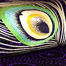 羽根の刺繍丸帯 質感・風合
