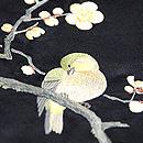 梅枝に鶯刺繍帯 鶯の刺繍