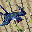 柳に燕刺繍名古屋帯 燕の刺繍