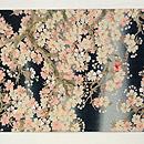 夜桜の名古屋帯  前中心
