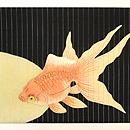 黒地金魚の夏帯 前中心