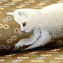 白猫と弘法麦の刺繍名古屋帯 質感・風合
