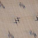 芭蕉布着物 トウイグワー・ヒキサギー 質感・風合