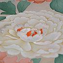 ベージュ地菊に牡丹色留袖 質感・風合