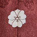 大彦作 梅樹に若松、菊文様色留袖 背紋