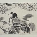小枝に小鳥墨絵の夏帯 前中心
