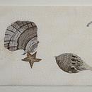 海辺に貝殻刺繍紗名古屋帯 前中心