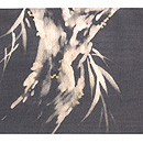 柳にセミの夏帯 前中心