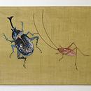 虫の刺繍帯 前中心