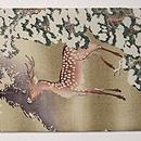 雪中鹿の図名古屋帯 前中心