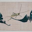 バッタとカブトムシの刺繍名古屋帯 前中心