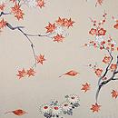 青海波絵羽織 背紋