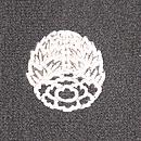蜻蛉の夏羽織 紋