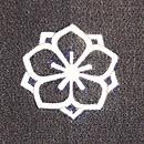 トンボの紗合わせ羽織 紋