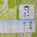 4つ紅梅大輪菊の小紋竺仙製 証紙