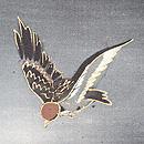 夕焼け空に雀の羽織 質感・風合