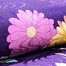 菊と蝶染名古屋帯 質感・風合
