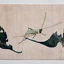 落ち葉にカブトムシ刺繍名古屋帯 前柄
