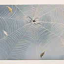 クモの夏名古屋帯 前柄