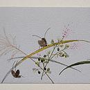 秋草に虫秋の名古屋帯 前柄