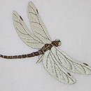 白麻地虫刺繍の名古屋帯 質感・風合