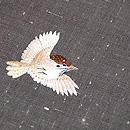 雪持ち柳に雀の名古屋帯 質感・風合