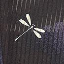 夏空に群れトンボ縦絽の羽織 背紋