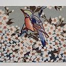 桜にヒヨドリの縮緬名古屋帯 前柄