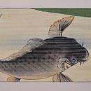 鯉の滝昇り図名古屋帯 前柄