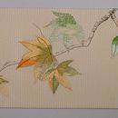 紅葉絽紗の刺繍名古屋帯 前柄