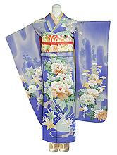蝶々に牡丹菊花の図振袖